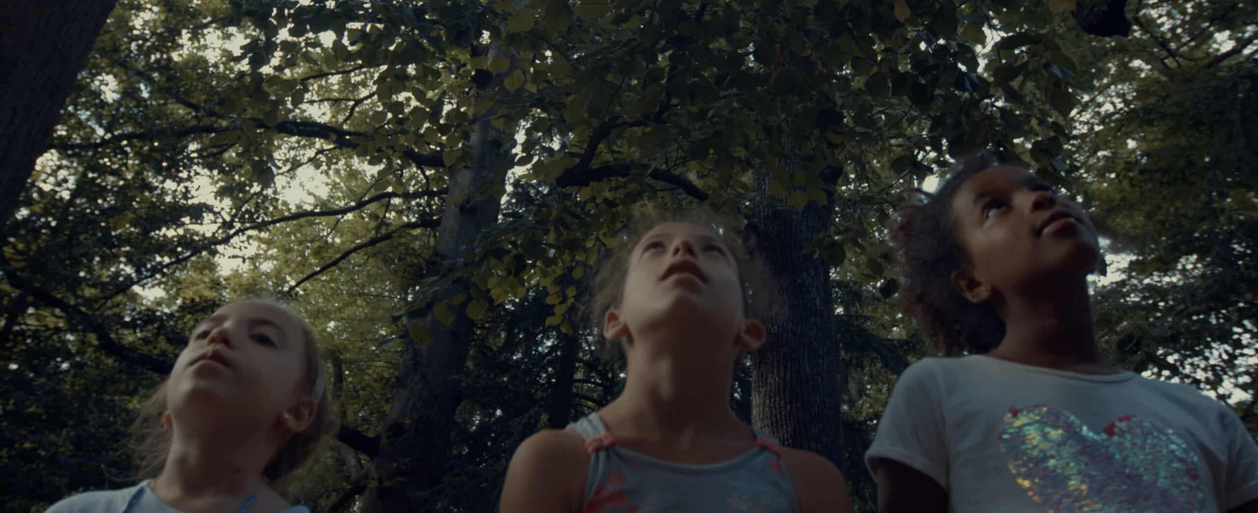 """La favola degli alberi parlanti</br><span class=""""sT"""">Villa Annoni, CUGGIONO</span>"""